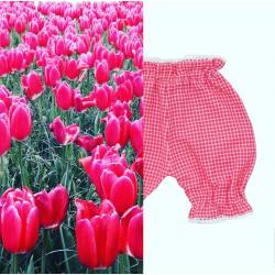 Pantaloncini Lina, Filobio